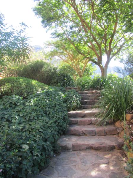 Mortared sandstone steps negotiate the gardens sloped aspect