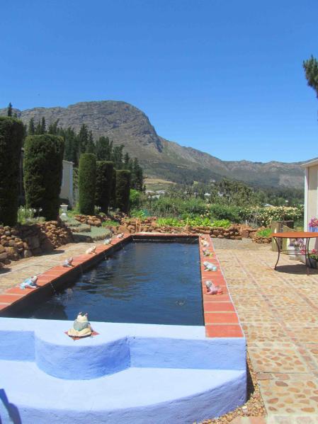 Raised Fountain Pool and stone veggie garden overlooked by Simon's berg