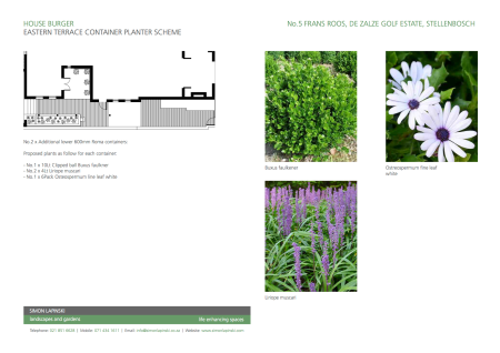 Eastern Terrace Container Planter Scheme