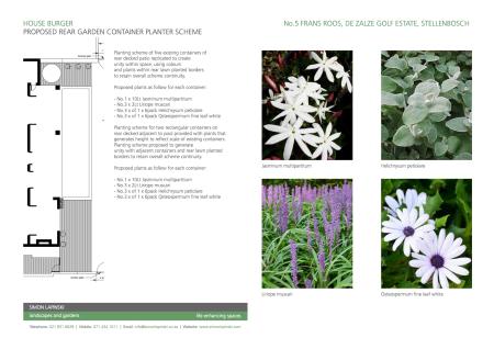 Rear Garden Container planting Scheme